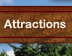 Wilderness Territory Attractions