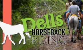 Dells Guide to Horseback Riding