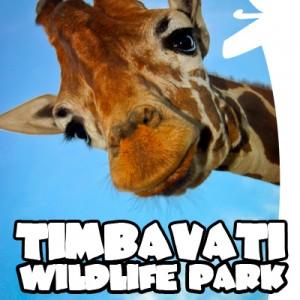 TimbavatiPark