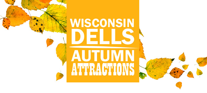 Free wisconsin dells coupon book 2018