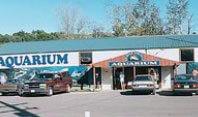 Dells Fish & Wildlife Museum