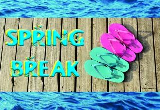 SpringBreakNewGallery