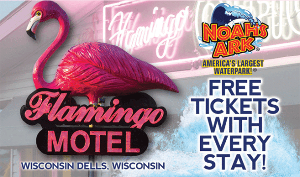 Flamingo Motel & Suites: A Familiar Name with a New Face