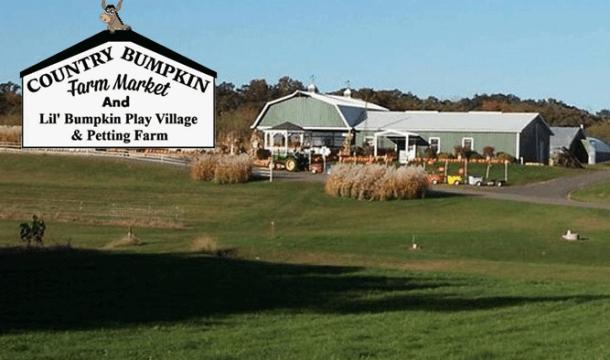 Autumn Highlight: Country Bumpkin