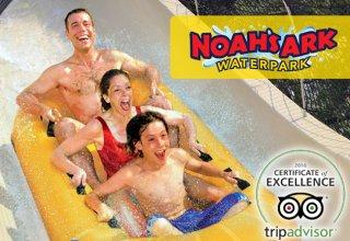 Spotlight-on-Noah's-Ark