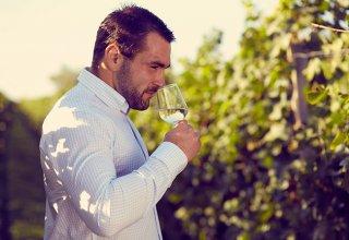 fall-wine-tastings-blog