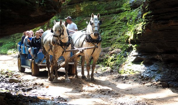 Don't Miss These Fall Attractions