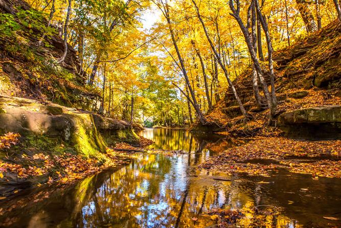 Skillet Creek in Autumn
